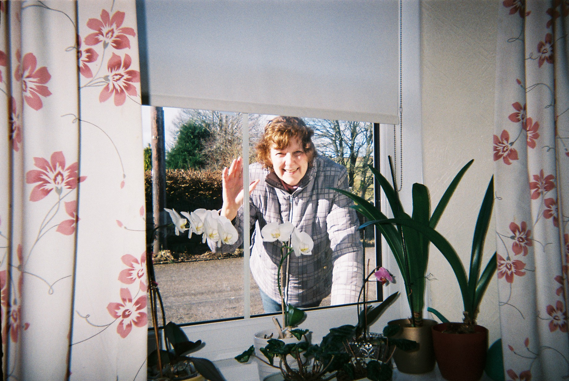 A neighbour smiles and waves through a curtained window